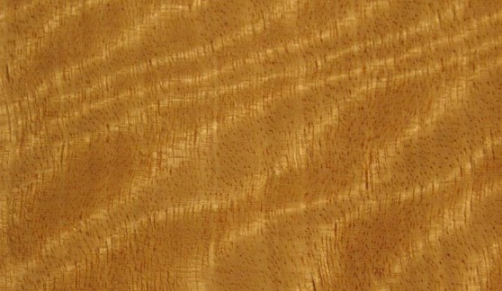 Satinwood_grain_detail_big
