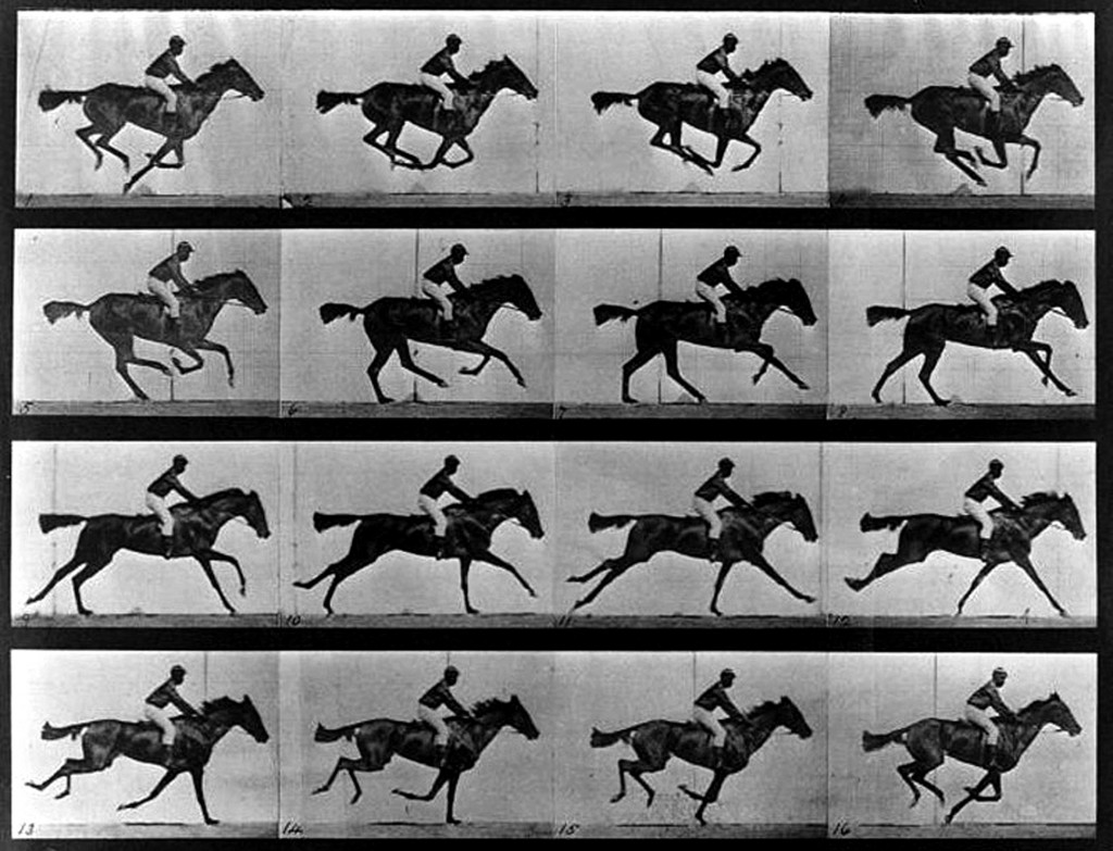 English photographer Edward Muybridge's studies of a horse in motion, 1878.